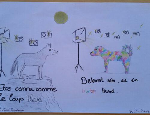 Forderunterricht Französisch Jahrgang 7-8