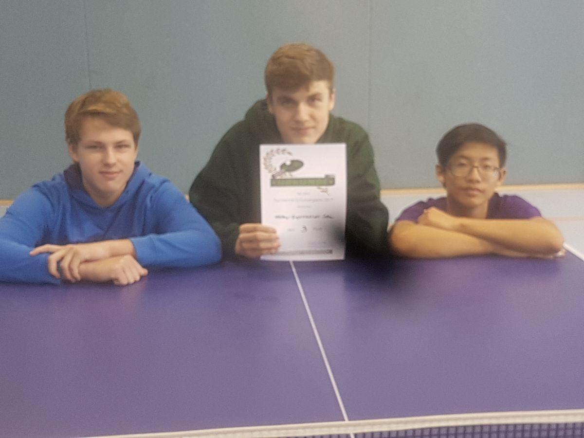 TischtennisSchulvergleich2017